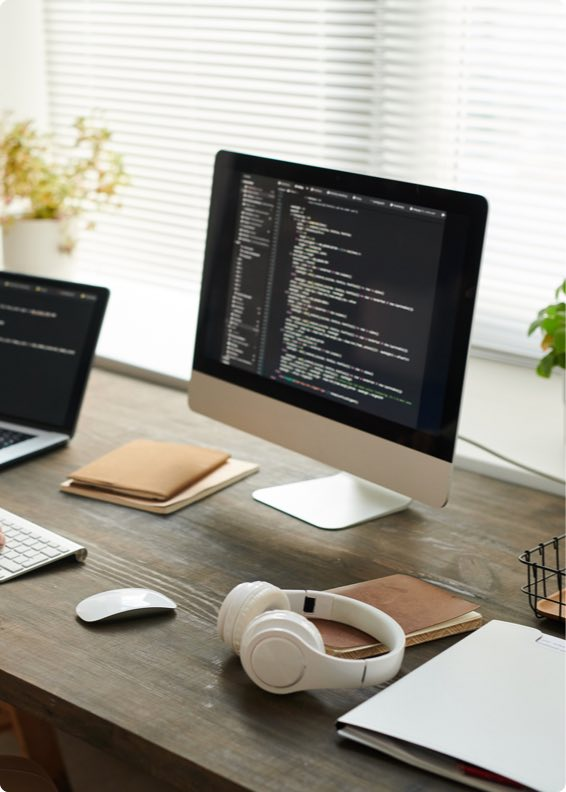 Information Technology Development